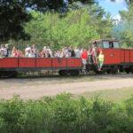 Koolireis rongiga